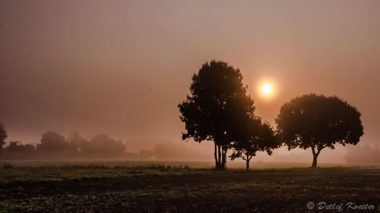 Landschaftsfotografie  Detlef Koester Fotografie Dortmund Nebel Sonne