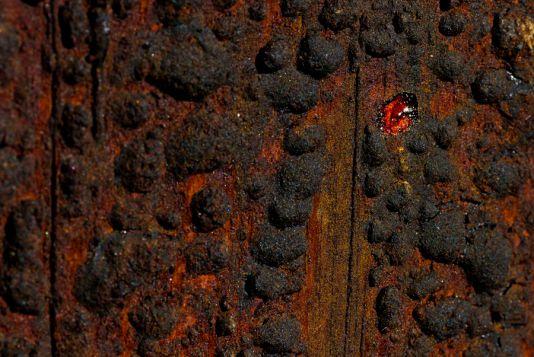 Harz IV Fotograf Detlef Koester Minimalismus