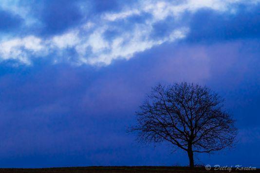 Landschaftsfotografie  Detlef Koester Fotografie Dortmund