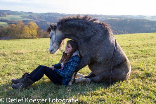 professionelle Tierfotografie Dortmund Rocky und Merle