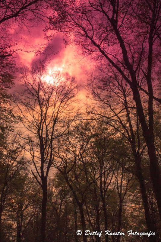 Heaven like hell Detlef Koester Fotografie Dortmund Landschaftsfotografie